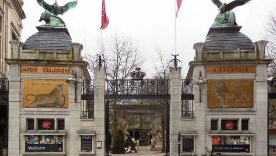 Знаменитый зоопарк Антверпена