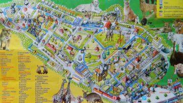 Чудесный зоопарк Сказка в Ялте