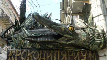 Крокодиляриум в Ялте, Крым